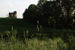 dalla torre della Bufalotta verso la forra