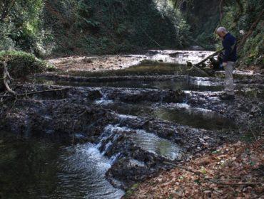 l'avventura a Roma in mezza giornata - il fosso dell'acqua raminga