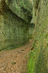 luoghi esotici vicino Roma - Via Cava Fantibassi