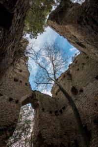 La torre presso le Cave di Riano - foto di S. De Francesco