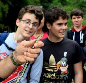 Luoghi segreti e animali: biscia dal collare nel fosso di S. Antonino nel parco di Veio