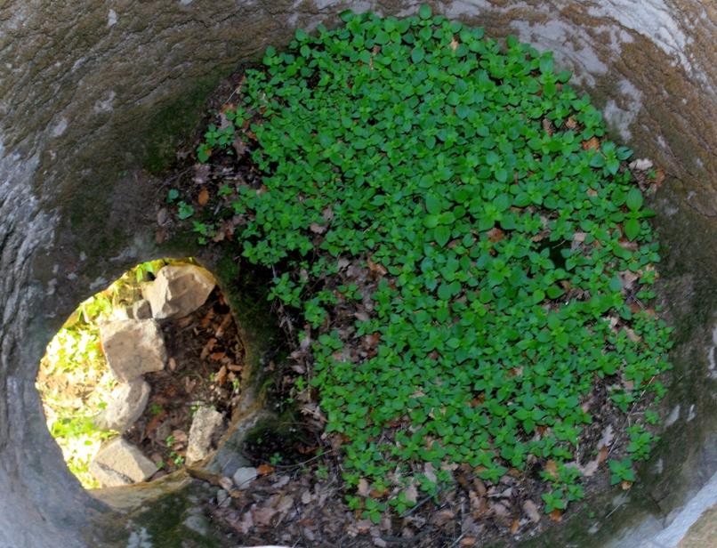 Il pozzo sotto Belmonte - Castelnuovo di Porto