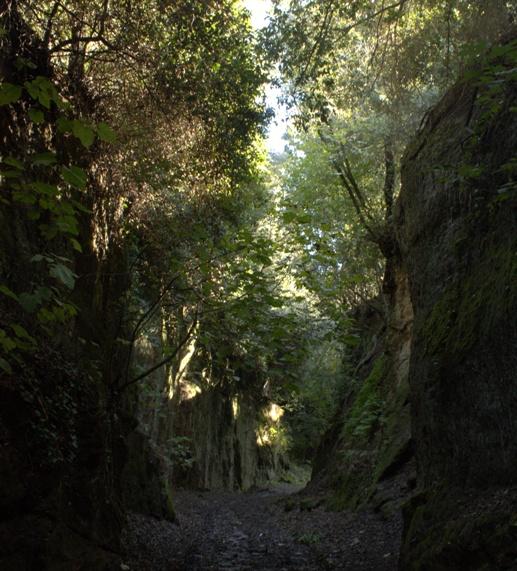 la via cava del Cecio