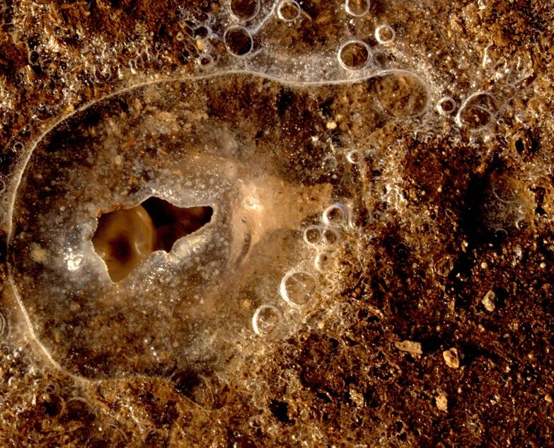 la solfatara di monte calderone - particolare