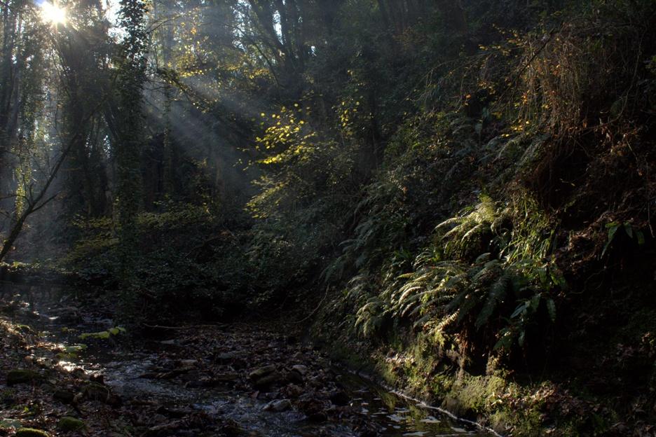 la suggestione del fosso dell'Acqua Nera