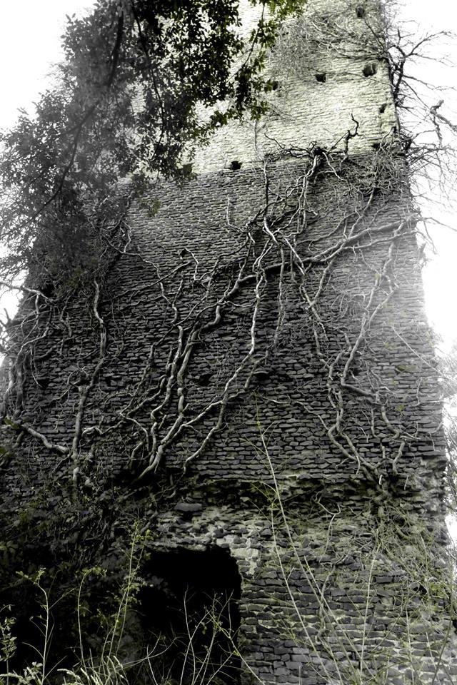 la Torraccia del Bosco - foto di D. Putortì