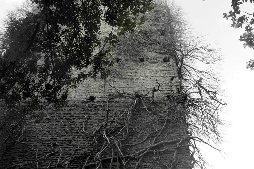 particolare della Torraccia del Bosco - foto di D. Putortìparticolare della Torraccia del Bosco - foto di D. Putortì
