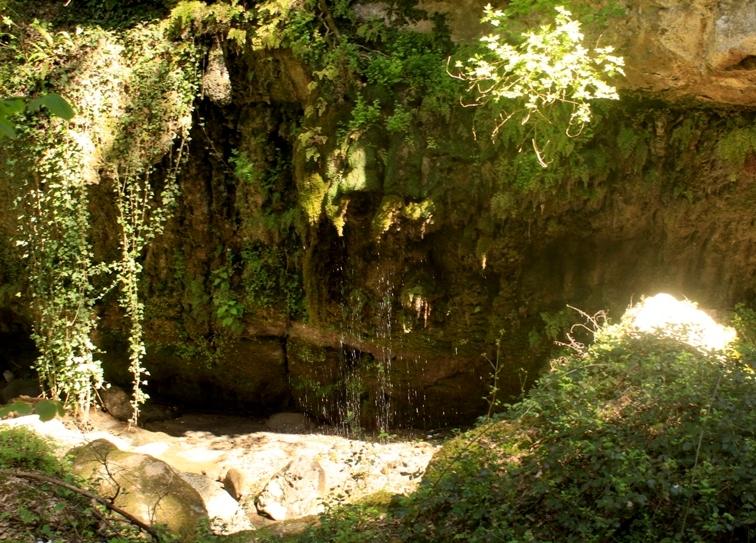 la galleria vegetale del Crèmera - foto di M. Bordini - acqua trekking nei dintorni di Roma 1