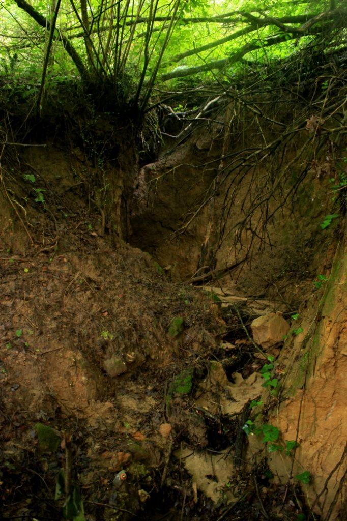 a valle della cascata effimera dell'Insugherata