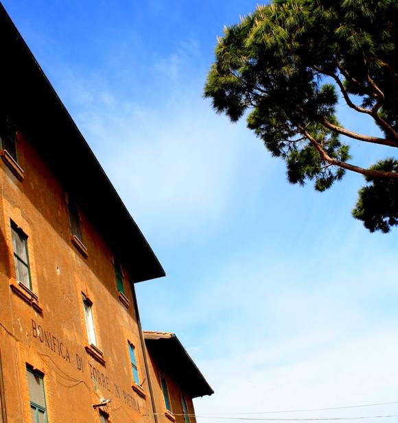 la bonifica di Torre in Pietra (il mare di Roma) 1