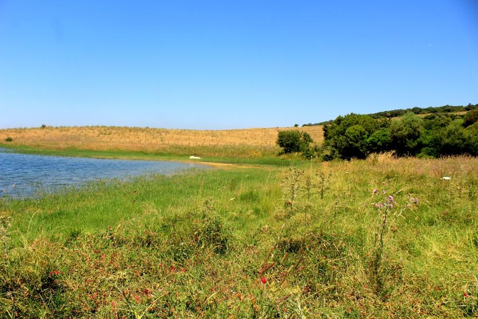 l'altro lago nei pressi di Santa Severa