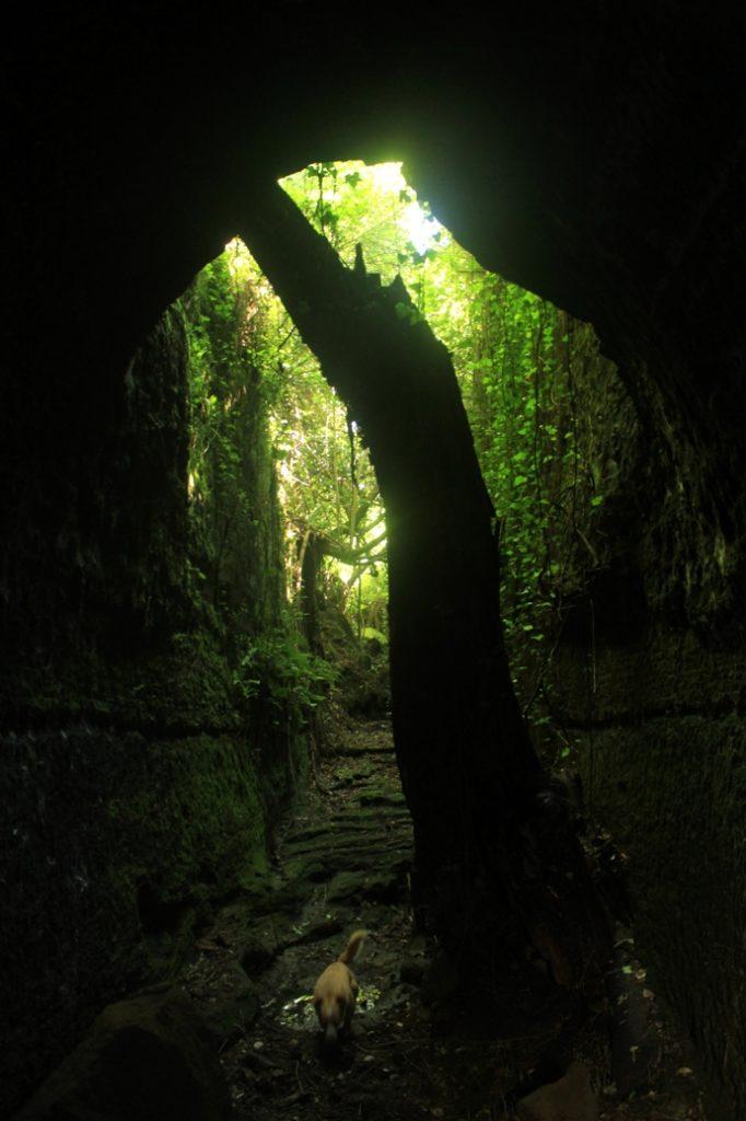 all'interno della galleria di Ripa Maraula