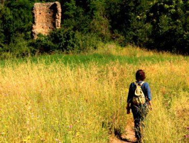 Si entra nel bosco sotto la Torre della Cecchignola