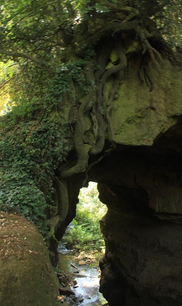 a valle della cascata dell'Olgiataa valle della cascata dell'Olgiata