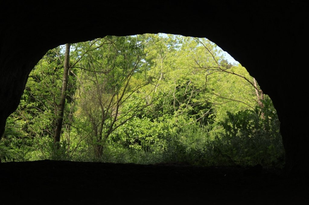 particolare di grotte vecchiarelli
