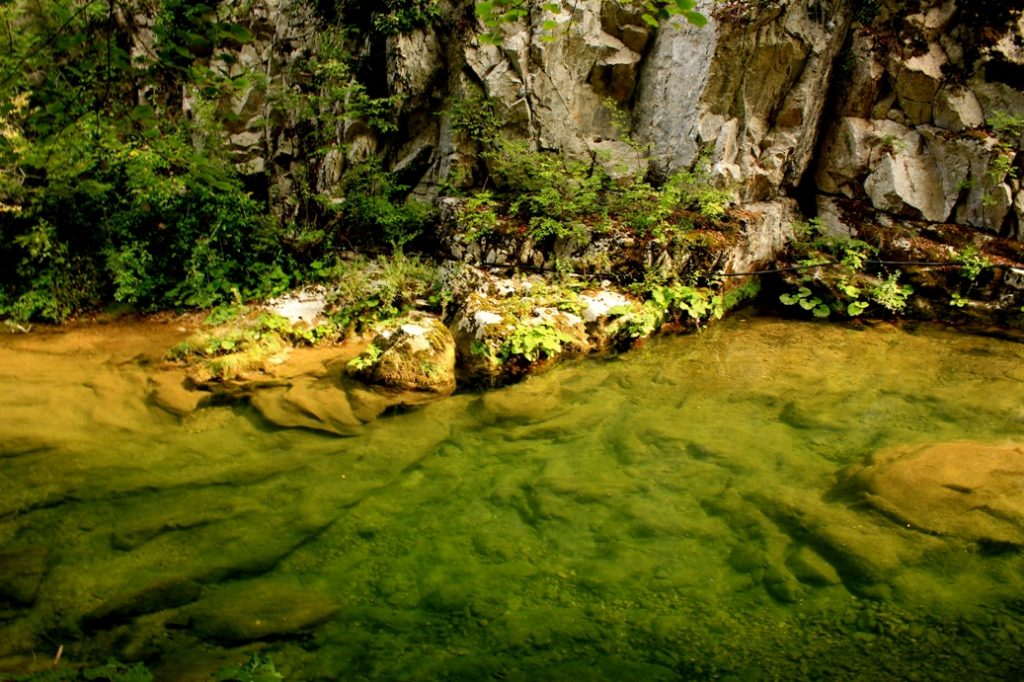 lungo il Rio Petescia