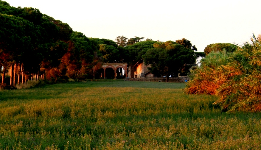 vista di tenuta Massara