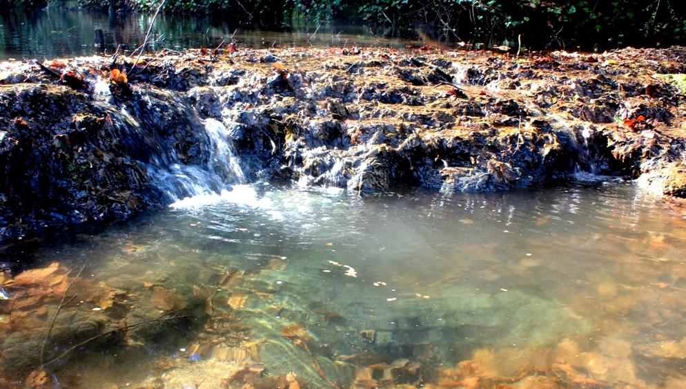 nel Fosso dell'Acqua Raminga alla periferia est di Roma 4