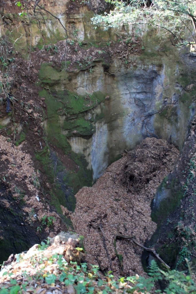 nel Fosso dell'Acqua Raminga alla periferia est di Roma 3