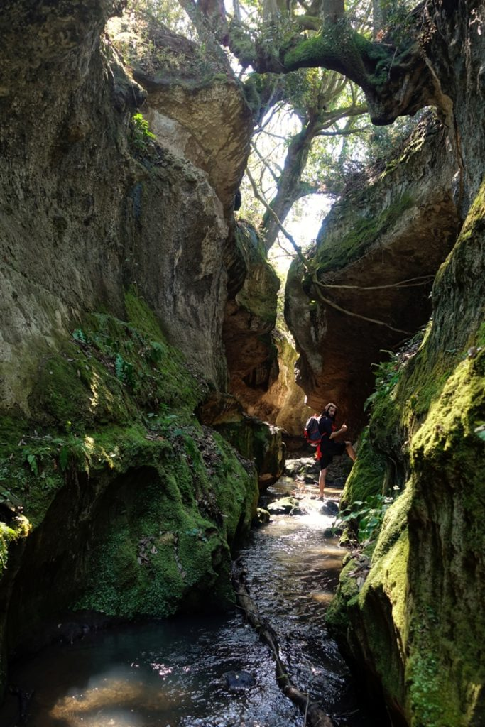 fantasticando i luoghi segreti - lungo il fosso Rigomero - Vetralla