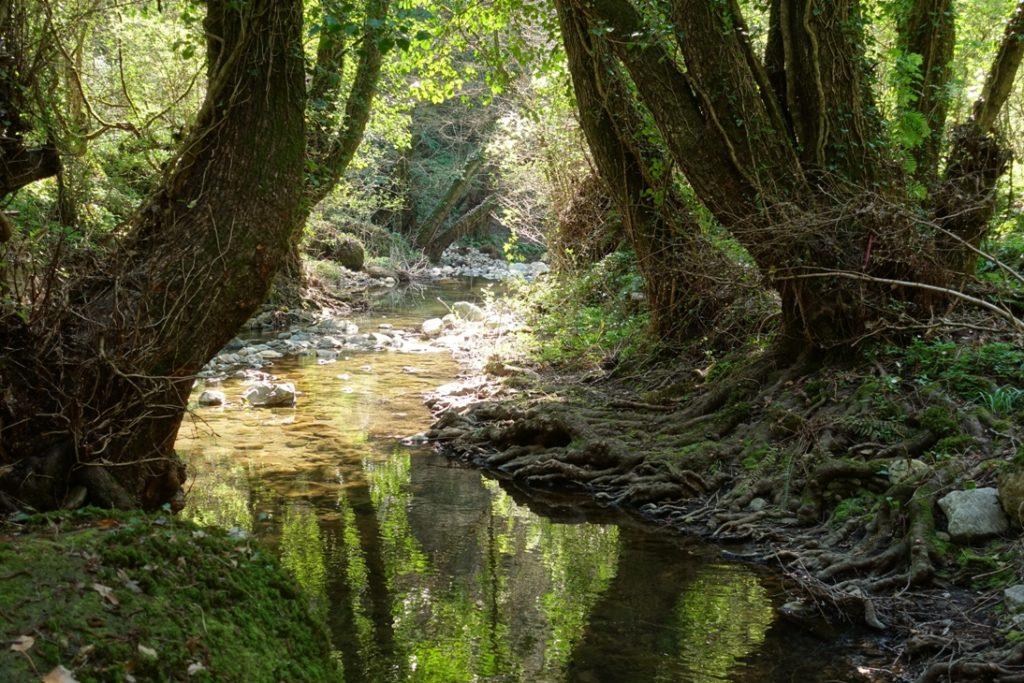 fantasticando i luoghi segreti - lungo il fosso del Neme. Barbarano Romano.