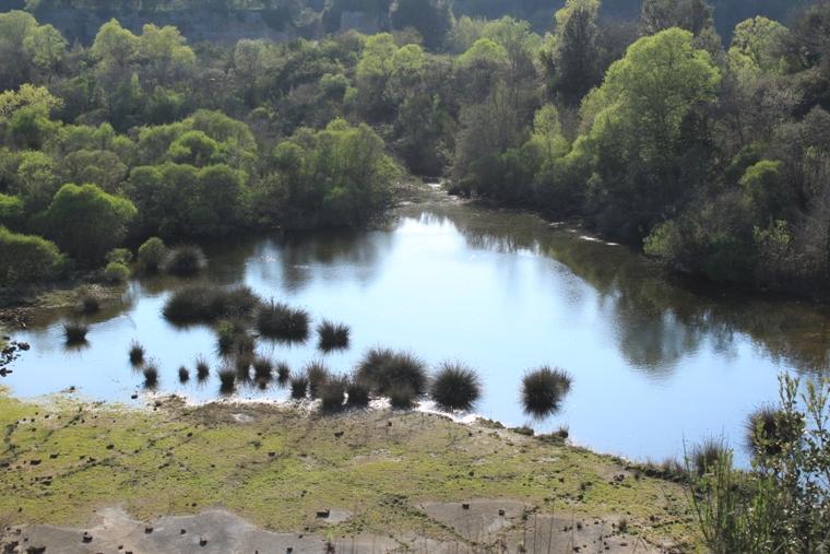 la vera specie da proteggere. I laghi della Mercareccia presso Manziana.