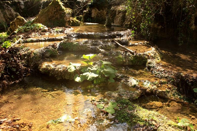Le sorgenti dell'Acqua Rossa a Gallicano